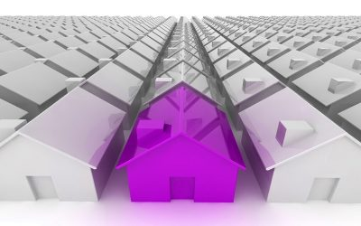 Purple House In A Field Of Grey Homes