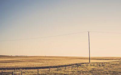 Empty Field Power Pole