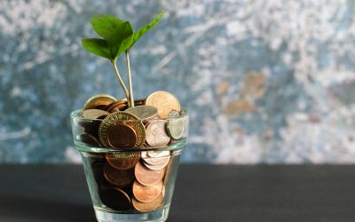 Plant Growing in a Cup of Coins