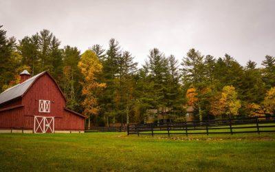 Red Barn Farm Trees