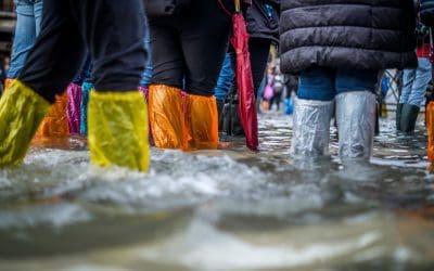 Flood Water Boots Umbrella