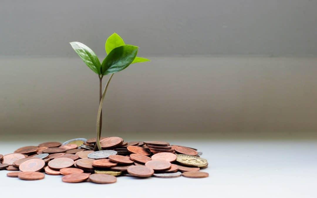 Plant Growth Money Invest